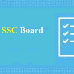 Gujarat 10th Blueprint 2020 GSEB SSC Important Question Paper Style 2020 Science/ Commerce/ Arts