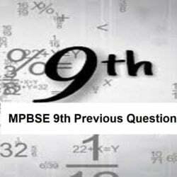 एमपी बोर्ड 9वीं मॉडल पेपर 2021 एमपीबीएसई 9वीं पिछला प्रश्न 2021 MP Board 9th Model Paper 2021 MPBSE 9th Previous Question 2021